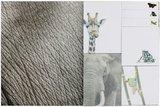 GreenPicnic - Milieuvriendelijke sticky notes met natuurfoto van National Geographic