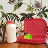 Ajaa roze PLA bioplastic lunchverpakkingen Greenpicnic