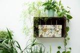 Dutch Design Brand bewaardoos met botanische print - GreenPicnic