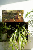 Opslagkist van FSC-karton - Dutch Design Brand Storage box