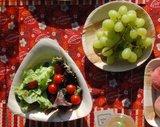 palmblad borden biologisch afbreekbaar servies van greenpicnic