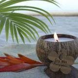 Candle coconut Greenpicnic