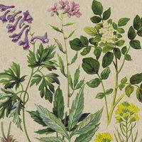 Naturals servet Botanical Pattern, 33x33cm gerecycled/ongebleekt
