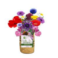 Superwaste Kweektuin, van gerecyclede theezakken - Bijenbloemen