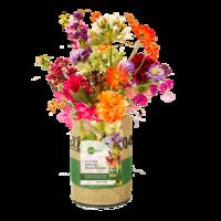 Superwaste Kweektuin, van gerecyclede theezakken - Vlinderbloemen