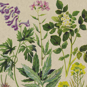 PaperDesign eco napkins botanical pattern groot