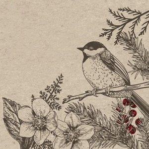 Paper Design Botanical Xmas servetjes eco lunch napkins van Naturals
